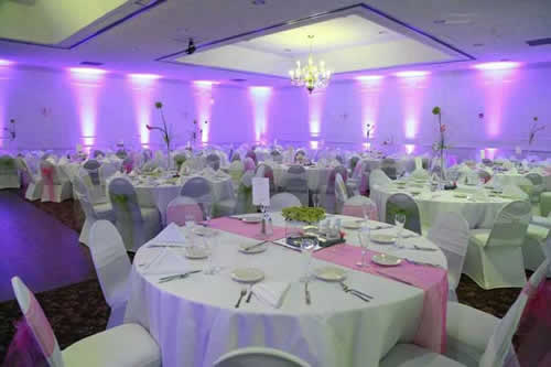 Rent wireless uplights with free shipping nationwide for weddings pink uplighting for spring wedding rent online for 19each free shipping both junglespirit Images