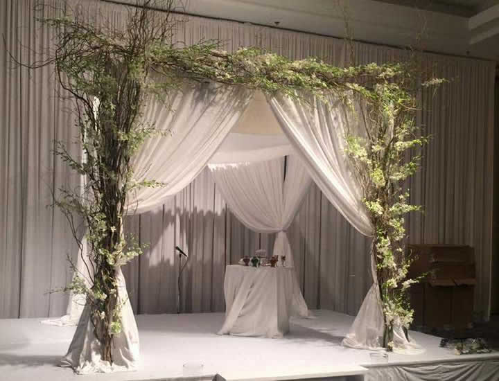 Canopy with Branches & Rent Pipe u0026 Drape Backdrops with FREE Shipping Nationwide for ...
