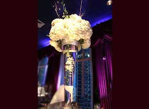 Spotlight for Centerpieces (Pinspots)